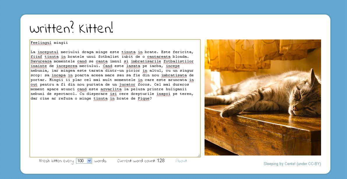 O pisicuta pentru 100 de cuvinte