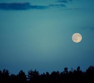 goana dupa luna