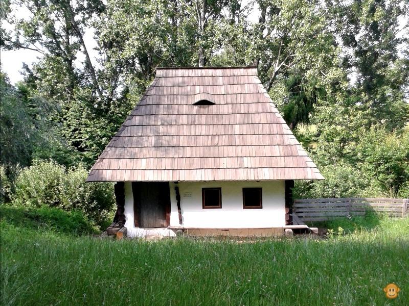 In Botosani