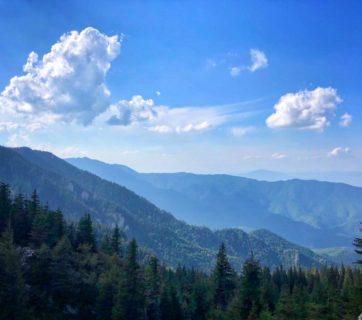 Antrenament 21km – August